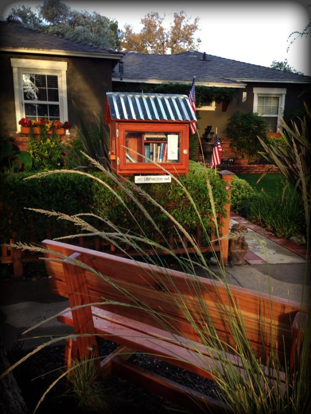 Custom Little Free Libraries